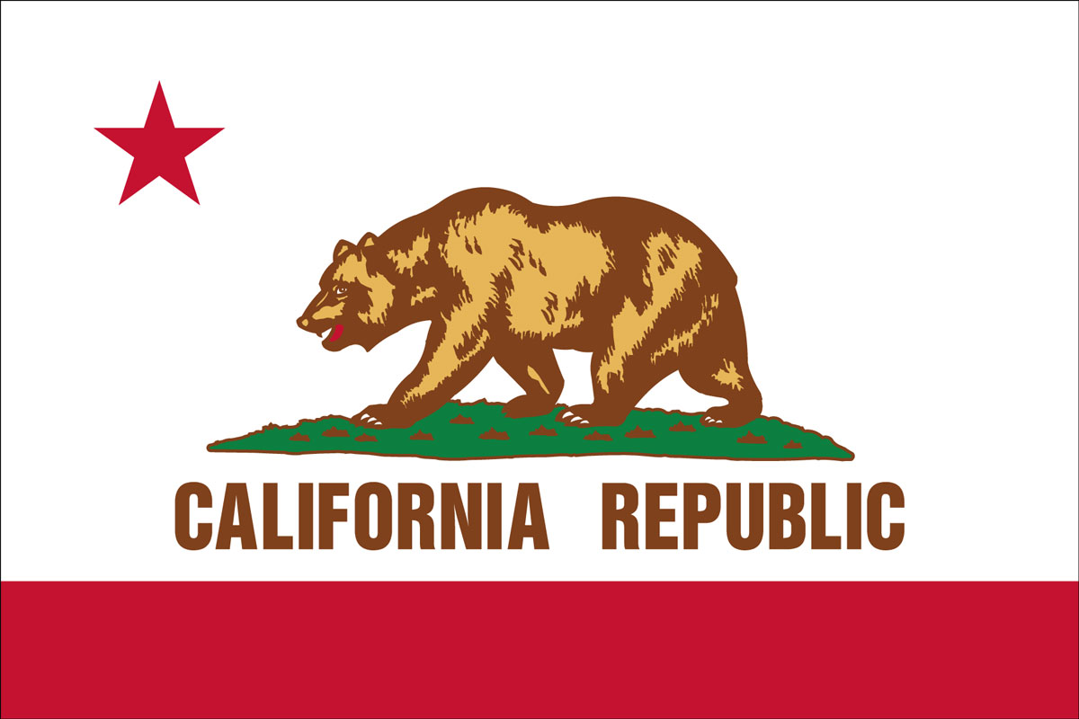 "12x18"" Nylon flag of State of California"