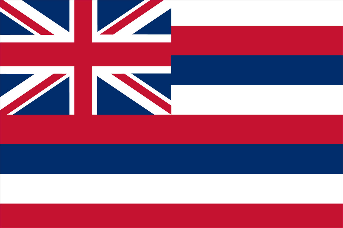 "12x18"" Nylon flag of State of Hawaii"