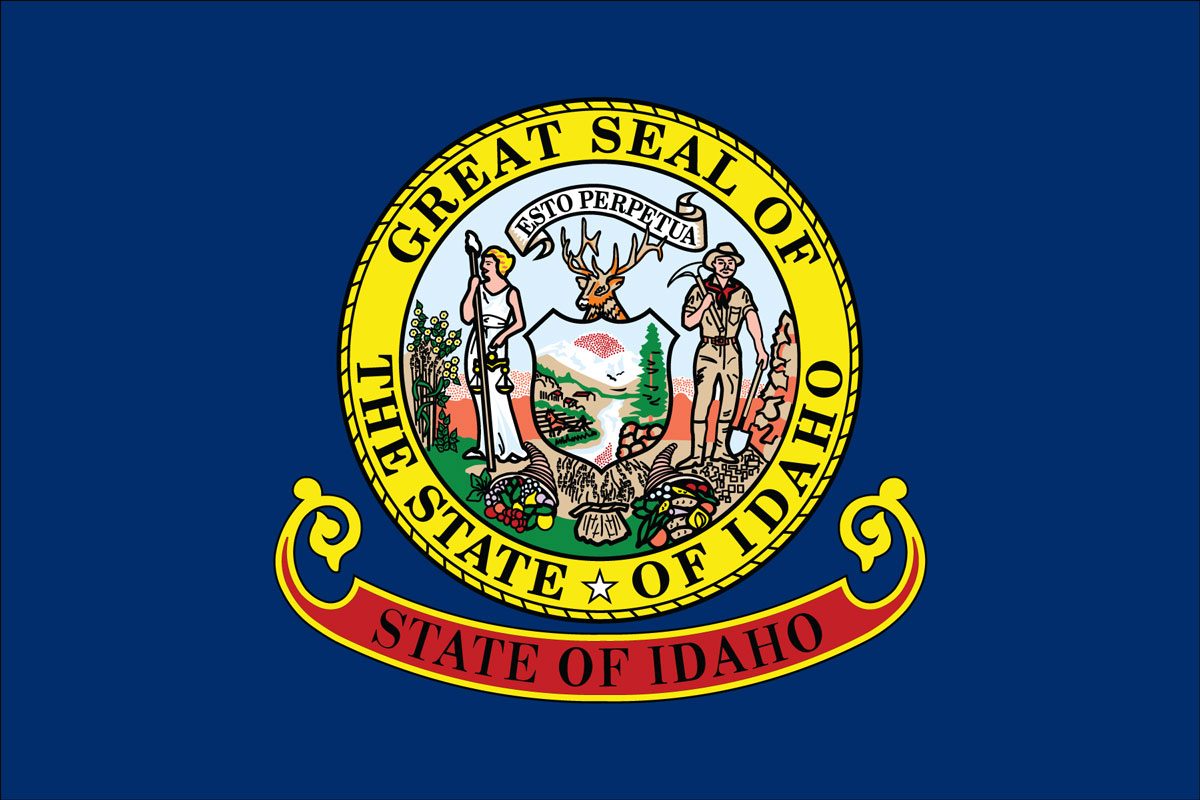 "12x18"" Nylon flag of State of Idaho"