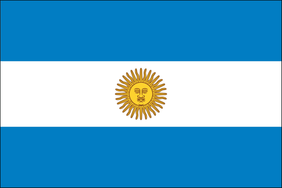 2x3' Poly flag of Argentina