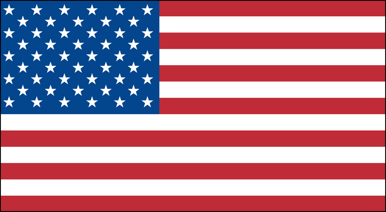 2x3' Poly flag of United States